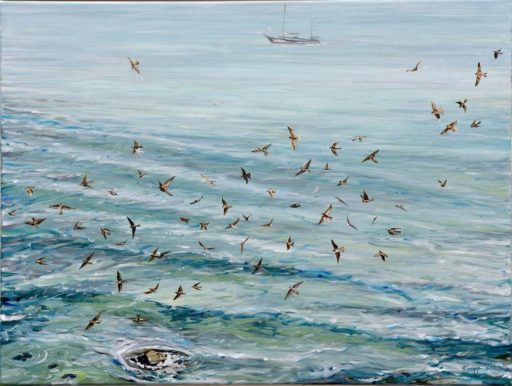 Seeschwalben